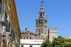 cattedrale siviglia... (piera tedde) Tags: sevilla colore andalucia chiesa andalusia viaggio architettura spagna cattedrale siviglia