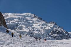Autour des Grands Mulets- (2) (Samimages) Tags: ski rando chamonix montblanc alpinisme grandsmulets