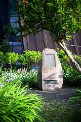 Yumenoshima (ubic from tokyo) Tags: japan tokyo cosina  40mm a7 voigtlnder ultron yumenoshima  voigtlnderultron40mmf2 sonya7 ilce7