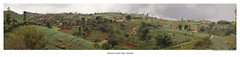 Dago area in Bandung (Zudzowne) Tags: panorama indonesia pano farming olympus bandung westjava agriculture e30 dago zudzowne patrickbeintema