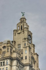 Someone to watch over me (cathbooton) Tags: city morning travel building clock liverpool 50mm time outdoor watching may tourist iconic canoneos liverbirds protecting liverbuilding niftyfifty canonusers