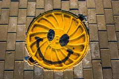 DSC_1723 (sergeysemendyaev) Tags: smile russia moscow robotics  2016    skolkovo  skolkovorobotics