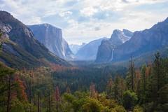 Yosemite valley (Gary*) Tags: