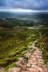 The Path to Clachnaben (Neillwphoto) Tags: clouds forest dark aberdeenshire path stones hill clachnaben glendye