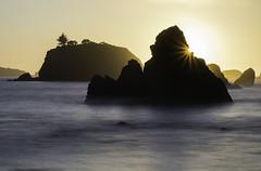 Mystic Forest Workshop with Michael Frye (PrairieIce60) Tags: california sunset fog landscape fuji coastal redwoods backlit seastacks sunstar klamathriver xt1
