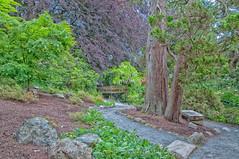 Royal Roads Gardens (jsnmckenzie) Tags: bc britishcolumbia victoria royalroadsuniversity rru gardenpath hatleycastle colwood nikcolorefexpro4