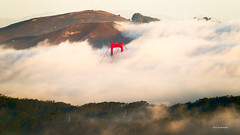 Morning Fog (davidyuweb) Tags: morning bridge fog golden gate sfist lowfog luckysnaspot
