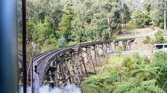 Puffing Billy Trip Melbourne VIC 02 May 2016 (45) (BaggieWeave) Tags: australia melbourne victoria steam vic steamengine steamtrain narrowgauge belgrave steamlocomotive puffingbilly locomotivecab