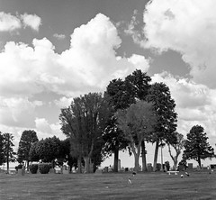 Memorial Day 2011 (JamesScottGraham) Tags: washington memorial day d76 124g tmax400 yashica wilbur