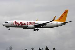 Pegasus TC-CCP, OSL ENGM Gardermoen (Inger Bjrndal Foss) Tags: tcccp pegasus boeing 737 osl engm norway gardermoen