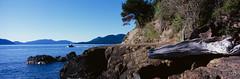 Anacortes Coast (Taomeister) Tags: panorama mediumformat wastate sanjuanislands anacortes washingtonpark 6x17 rvp100 fidalgoisland fujifilmvelvia100 fujinon1058 fujicapanoramag617