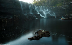 Emerging (Mick Fletoridis) Tags: longexposure fog waterfall rocks water landscape australia nsw winter