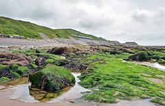 37401 at Coulderton Beach (robmcrorie) Tags: seaweed beach pool coast rocks shingle cumbria cumbrian 37401 coulderton