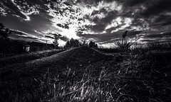Ant Hill (KWinters Photography) Tags: sky blackandwhite bw white black nature monochrome clouds landscape nikon colorado flickr shadows outdoor gray wideangle nikkor tamron anthill darks d7200