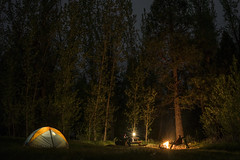 JustCamping (shaunezell) Tags: camping camp mountain mountains night tent campfire yosemite yosemitenationalpark yosemitevalley nightcaps