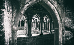 abbey (Ray Moloney Photography) Tags: county old travel ireland building history church stone architecture ancient stonework religion gray landmark eire historic monastery cloister cloisters friary limerick 500px askeaton ifttt