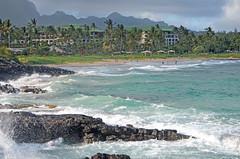 Kauai, 2016 (carrie227) Tags: hawaii kauai hawaiianislands