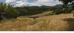 Vicoli - Panorama di campi coltivati (Andrea di Florio (5,000,000 views)) Tags: mountain sunrise landscape nikon solitude nuvole estate natura campagna campo pace 28 montagna 70200 paesaggio abruzzo pecore campi nubi d600 2470 serenit allevamento andreadiflorio