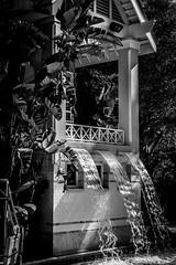 Marriott's Cypress Harbour - Orlando Florida (BDA Rebel) Tags: blackandwhite fountain marriott outside villa cypressharbour