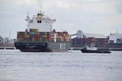 MSC Sandra (Gareth Garbutt) Tags: containership msc rivermersey merseyshipping mscsandra