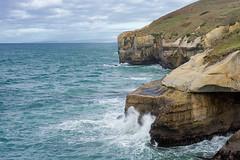 Tunnel Beach (borealnz) Tags: sea newzealand beach rocks waves dramatic overcast nz dunedin splash tunnelbeach