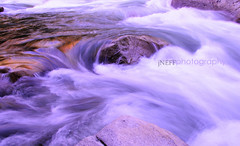 y o s e m i t e (puppies8691) Tags: nature water river nikon outdoor natur sigma naturallight natura whirlpool yosemite yosemitenationalpark naturesfinest flowingwater artofnature yosemiteriver nikond300 jneff naturesfineart jneffimages jneffphotos jneffphotography jneffphotographyyosemitejune2016