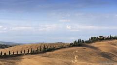 20160704_crete_senesi_siena_tuscany_666m7 (isogood) Tags: italy landscapes horizon country scenic tuscany crete siena cretesenesi asciano senesi