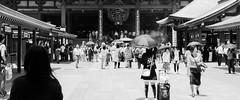 Sensoji Temple (AAcerbo) Tags: blackandwhite bw tourism japan temple sensoji japanese tokyo widescreen cropped asakusa cinematic 241