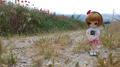 In the countryside (-nickless-) Tags: outdoors doll little dal muñeca rotchan minidal gozoki obitsu11cm