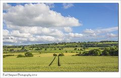 Northumberland Countryside (Paul Simpson Photography) Tags: trees nature clouds farm farming harvest bluesky farmland northumberland fields northeast naturalworld countrside photosof imageof tynedale tynevalley photoof imagesof sonya77 paulsimpsonphotography northtynevalley july2016