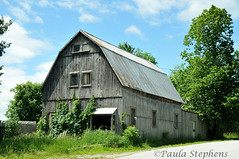 Old Barn (Paula Stephens) Tags: building barn rural vermont farm country newengland landmark structure historic agriculture vt