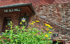 The Old Mill (Paula Stephens) Tags: old flowers building mill architecture vintage vermont antique newengland structure jericho vt chittendon