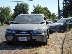 Lincoln County Sheriff, Washington (AJM NWPD) (AJM STUDIOS) Tags: ajm ajmstudiosnet nwpd northwestpolicedepartment washington wa nleaf ajmstudiosnorthwestpolicedepartment ajmnwpd northwestlawenforcementassociation ajmstudiosnorthwestlawenforcementassociation 2012 2013 policecar sheriff lincolncounty lincolncountysheriff lcso lincolncountysheriffsoffice lincolncountysheriffwashington lincolncountysheriffwa lincolncountywashingtonsheriff lincolncountywasheriff lincolncountysheriffphotos lincolncountysheriffpictures lincolncountysheriffsofficeunits lincolncountysheriffcar davenport easternwashington rural chevyimpala chevroletimpala unmarked gray grey unmarkedchevyimpala unmarkedchevroletimpala undercover pose front chevyimpalafront