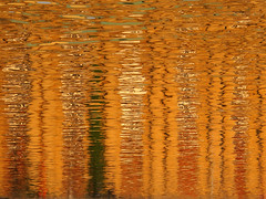 Abstract (Batikart) Tags: city urban orange sunlight lake abstract colour building water colors lines yellow reflections