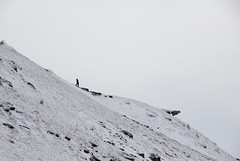 Going up (Tim Bow Photography) Tags: winter light white mountain snow monochrome wales dark landscape minimal breconbeacons fields welsh brecon beacons desolate whiteout winterlandscape wintery timboss81 timbowphotography winterminimal desolatewinterlandscape