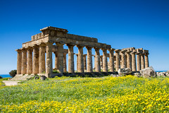Greek Temple at Selinunte (Circum_Navigation) Tags: italy monument yellow architecture greek temple spring ancient italia ruin meadow landmark sicily sicilia springtime selinunte selinunt
