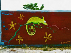 Curly the Chameleon (Steve Taylor (Photography)) Tags: street city flowers red christchurch streetart tree green art st wall matt graffiti mural branch butterflies canterbury jess lime chameleon colombo siomara jessiedeboer mainlandpaints