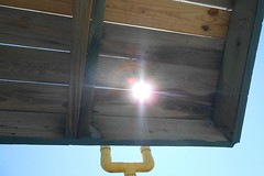 Sol peeking through the Slats (Zoom Lens) Tags: ocean sea sun seagulls shells fish bird beach pelicans water sunshine birds seashells sunrise fun pier fishing sand surf waves fishermen florida gull gulls joy shoreline atlantic breakers relaxation sunbathers seabirds johnrussellakazoomlens copyrightbyjohnrussellallrightsreserved adayinthelifeatthebeach