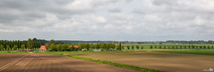 Panorama Goeree Overflakkee (BraCom (Bram)) Tags: trees panorama sunlight holland lines clouds canon landscape bo