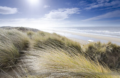 Sunny Days (Adam Kennedy Photography) Tags: blue sea sky sun seascape beach grass landscape sand nikon skies dunes sigma february 1020mm merseyside formby adamkennedy d7000