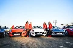 Feline (2KP) Tags: auto girls orange france cars car tour bordeaux desire f type jaguar autos cabriolet aquitaine gironde 2013 ftype