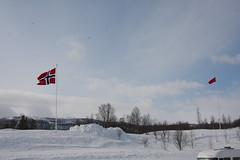 """Tørrskoddfelten 2013. Det blir et par knepp på vinden i dag. • <a style=""""font-size:0.8em;"""" href=""""http://www.flickr.com/photos/93335972@N07/9196733548/"""" target=""""_blank"""">View on Flickr</a>"""
