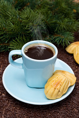 cup of coffee and cookies madeleines on the background of fir branches, vertical (cook_inspire) Tags: christmas xmas winter food holiday cup kitchen coffee cake closeup breakfast french dessert cuisine baking cookie drink sweet eating branches decoration culture shell nobody gourmet delicious biscuit homemade snack pastry fir madeleine shape aromatic bake dishware