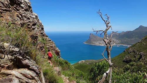 Thumbnail from Hoerikwaggo Table Mountain Trail