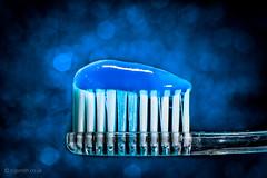 Toothbrush in Blue (Roj) Tags: blue macro powershot toothbrush raynoxdcr150 canong1x photographersontumblr