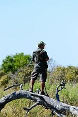 Botswana 2012 (.Till) Tags: africa expedition animals 35mm nikon wildlife south delta victoria falls 1750 zimbabwe afrika 28 botswana 18 70200 2012 okavango sambia d7000