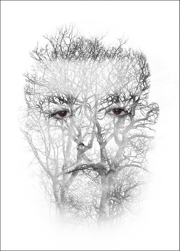Andrew & tree
