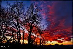 Atardecer invernal (PacoSo) Tags: naturaleza nature atardecer natura puestadesol cielos navarra pacoso crepsculovespertino cielosdenavarra