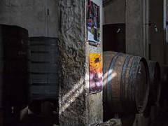 La entrada a la bodega (Gonzalo y Ana María) Tags: españa canon spain anamaría jumilla gonzaloyanamaría fotoencuentrosdelsureste bodegasalceño