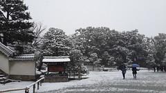 (miya33) Tags: 京都 雪 京都車站 京都駅 元離宮 ニ条城 flickrandroidapp:filter=none
